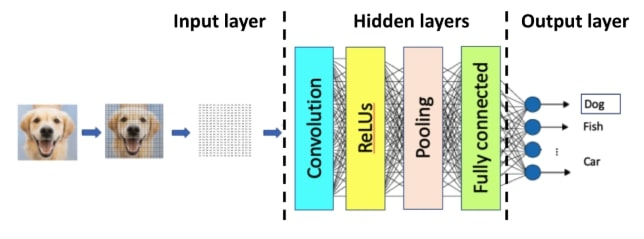A CNN classifies an image by translating picture content to location and color codes. Afterwards the hidden layers do their work and make a prediction in the output layer.