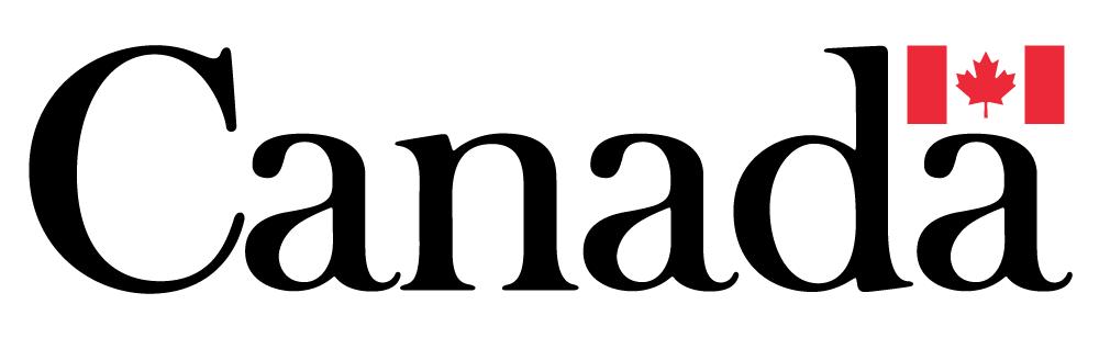 Spark Niagara Logo
