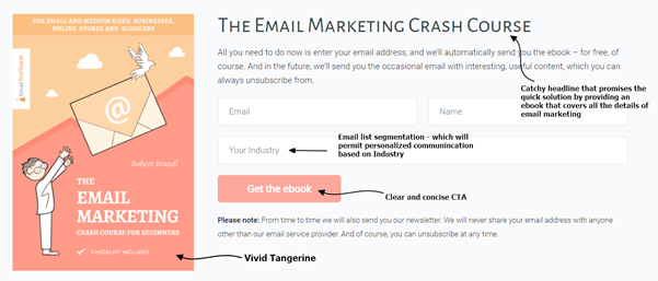 Email lead magnet ebook