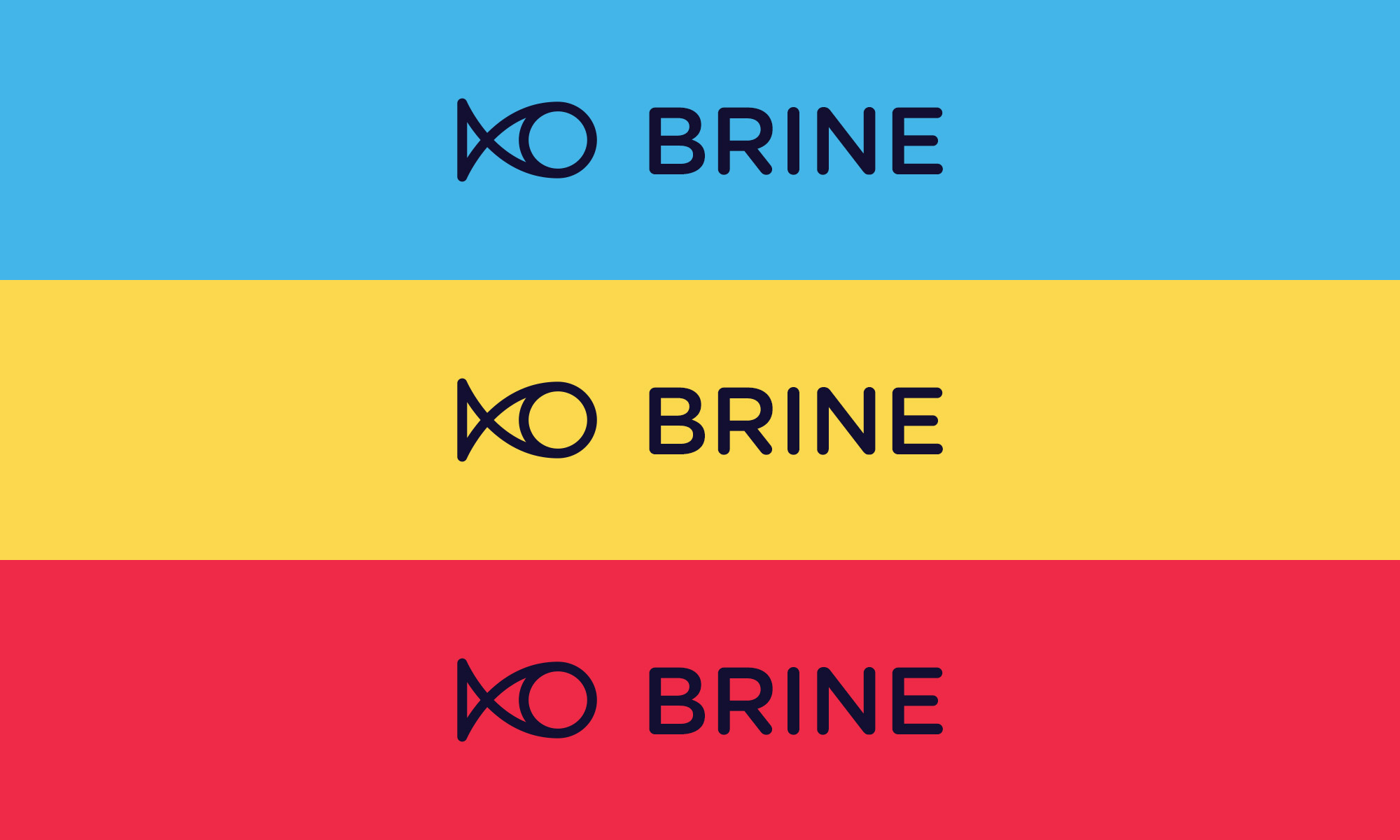 The Brine logo on a different colour backgrounds.
