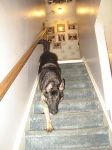 Apollo Coming Down Stairs