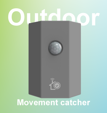 Outdoor Motion Moment Catcher