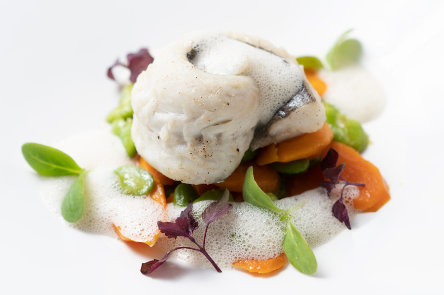 Merlu rôti au four, fricassée de fèves aux carottes et émulsion iodée