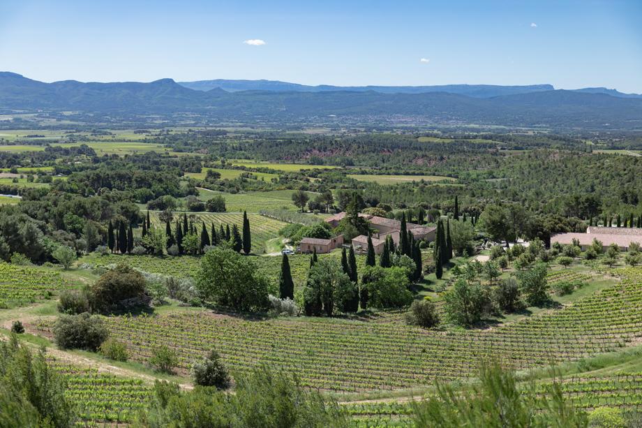 Balade dans les vignes de Provence