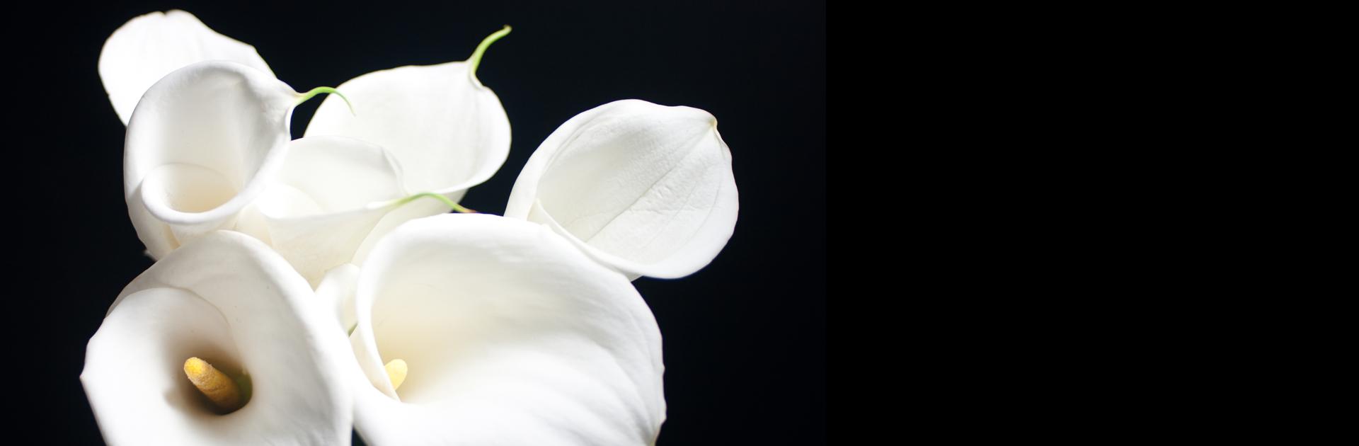 Blumen Flaschka
