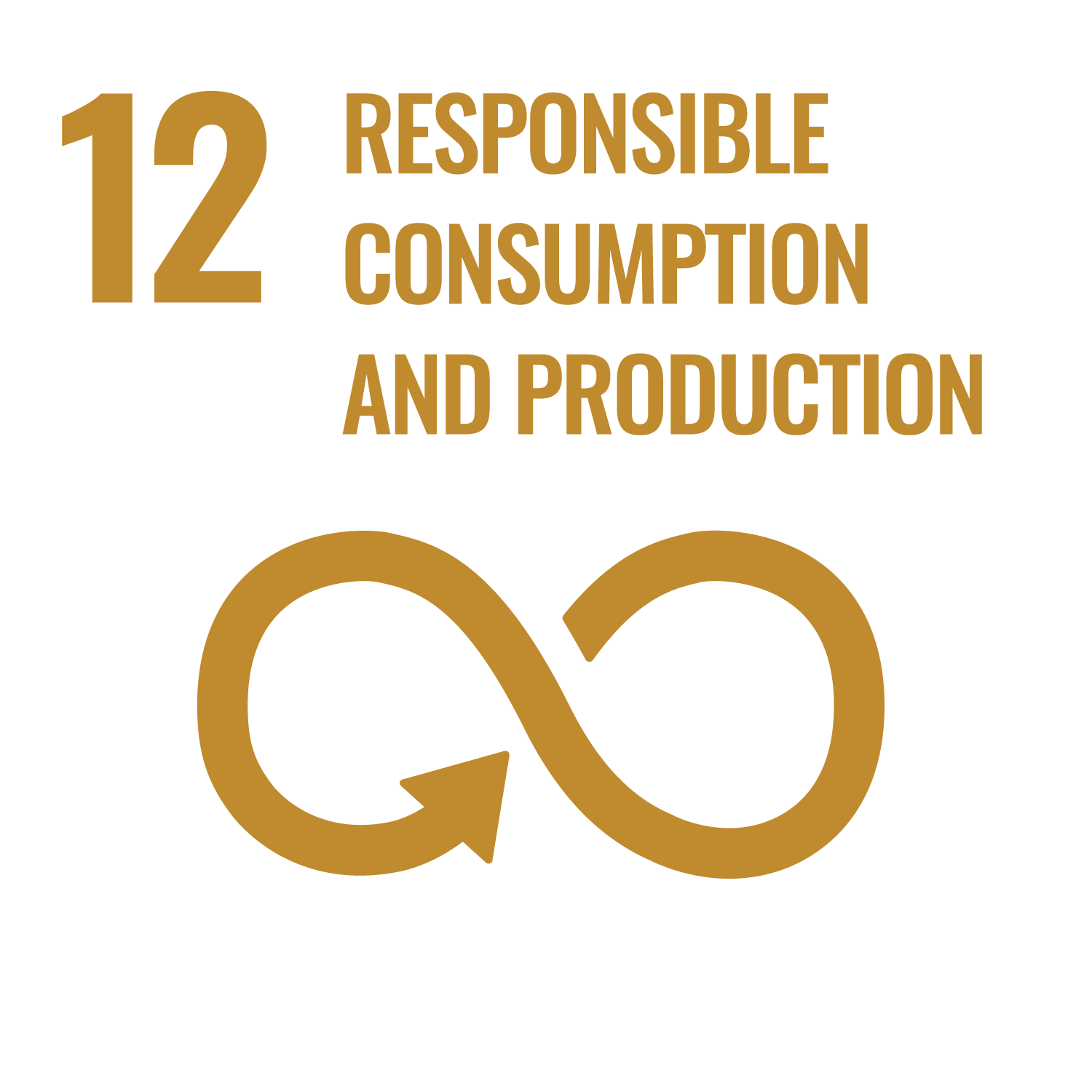 United Nations Sustainable Development Goals - responsible consumption and production