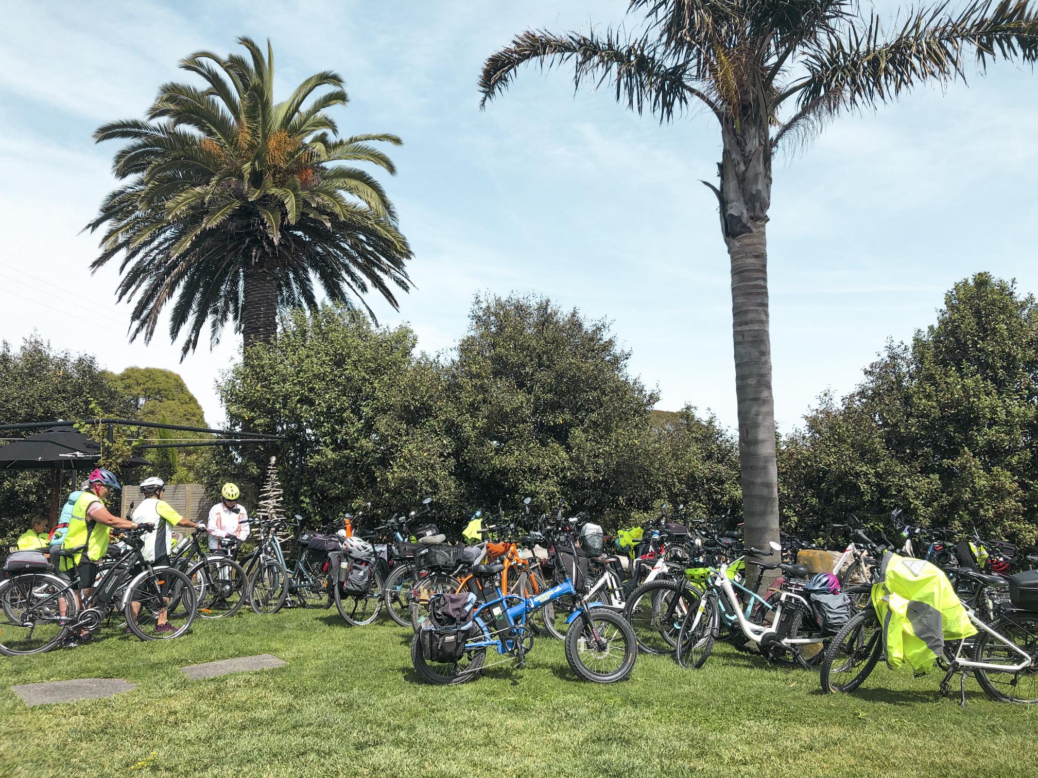 Bike rack on the lawn