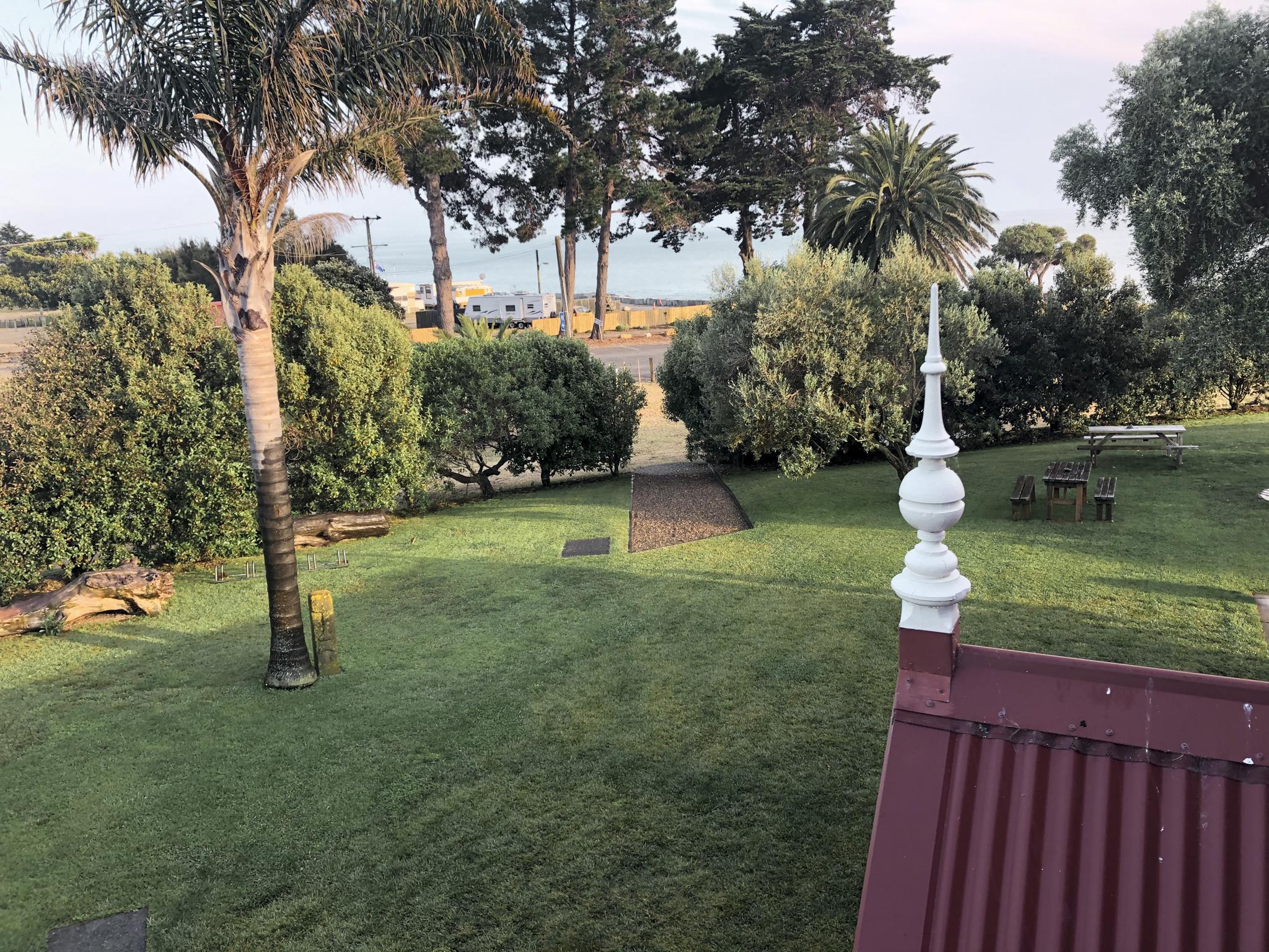 Surrounding palm trees