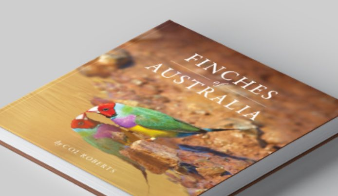 Flametree Creative designed Finches of Australia Book. A photographic book by Col Roberts