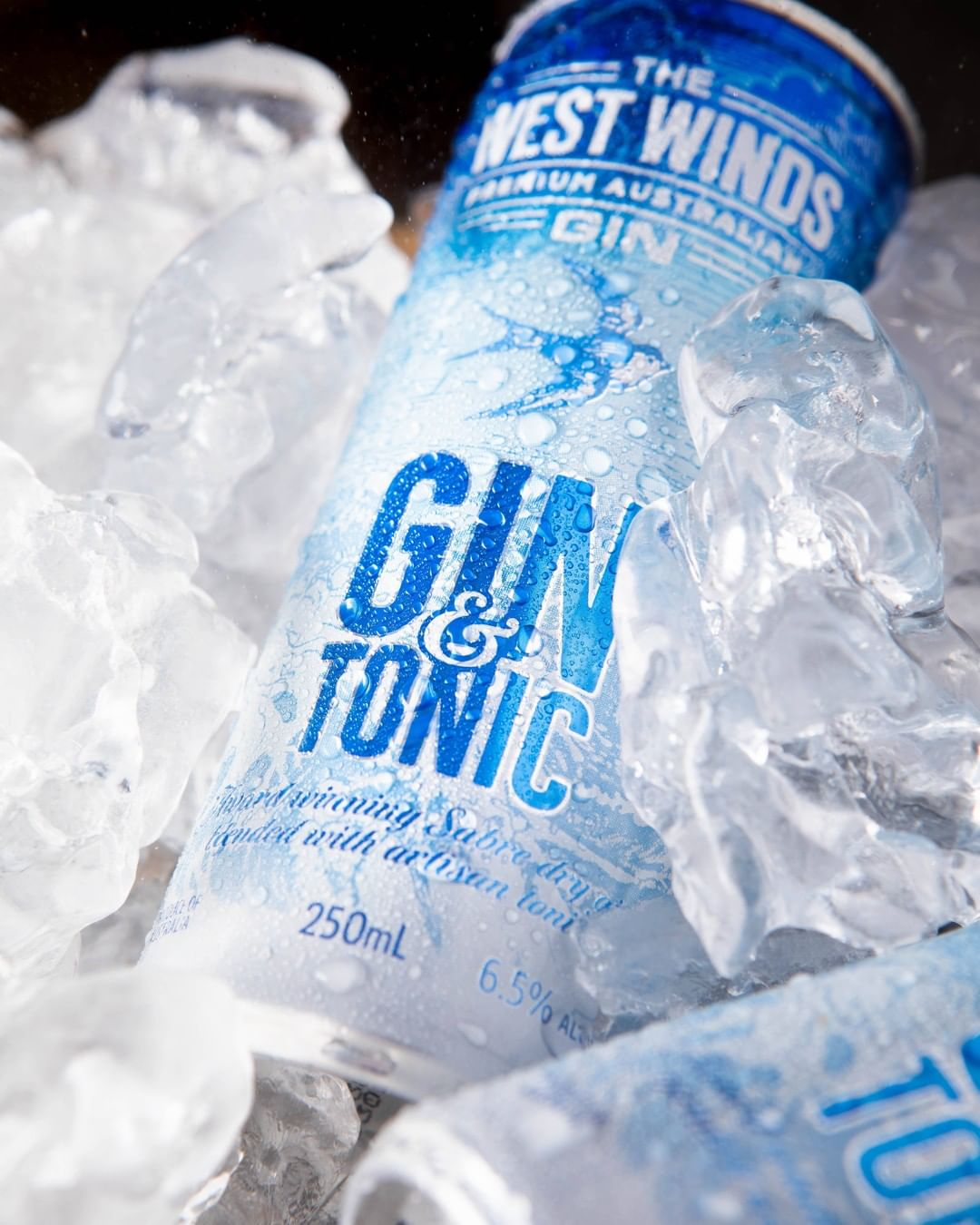 Gin & Tonic packaging for West Wind Gin