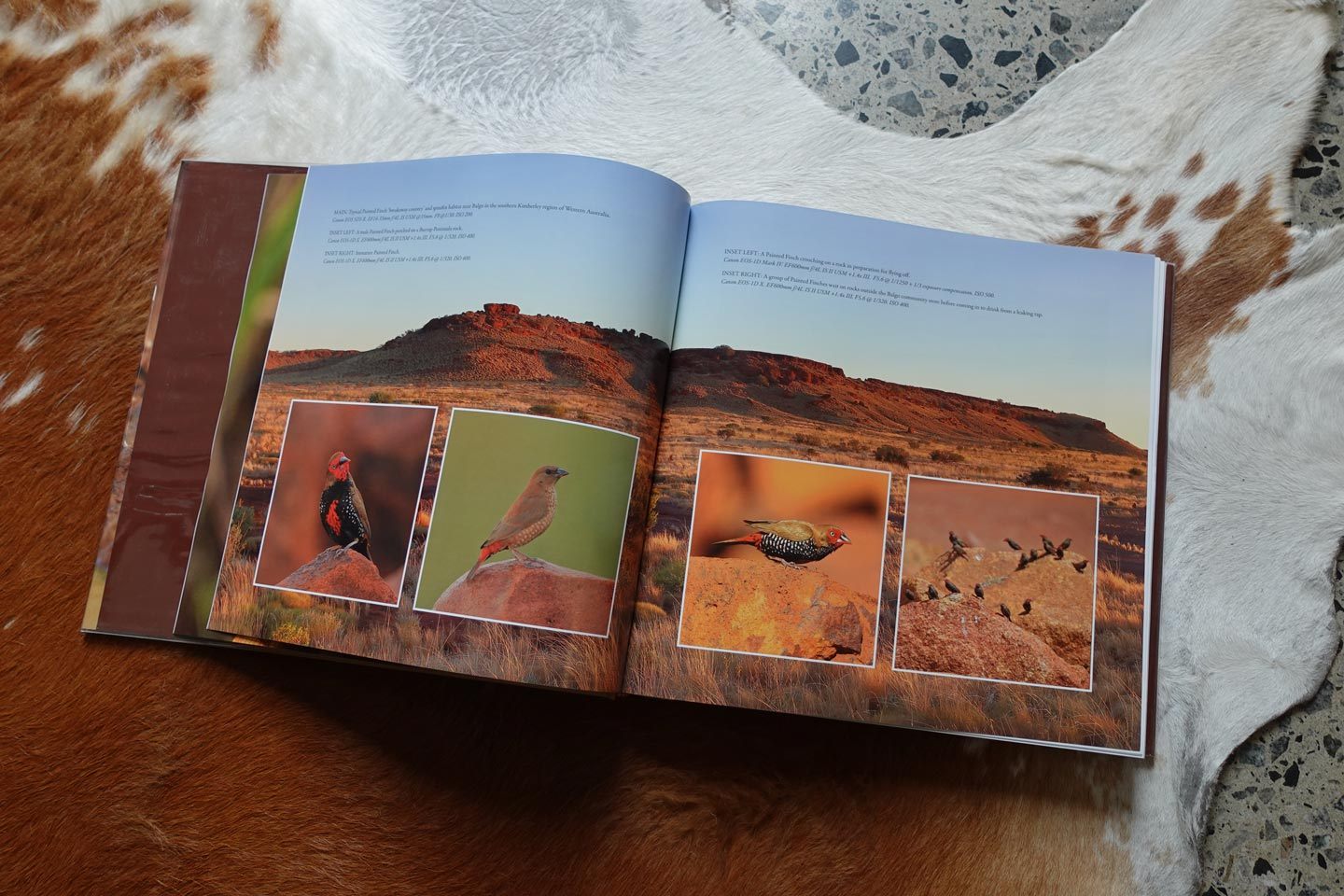 Finches of Australia - book interior