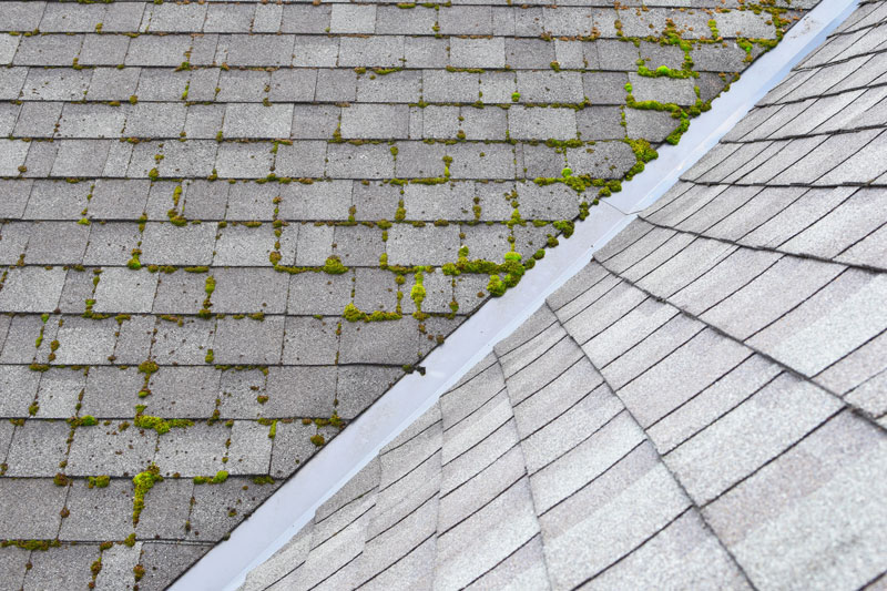 roof in need of cleaning