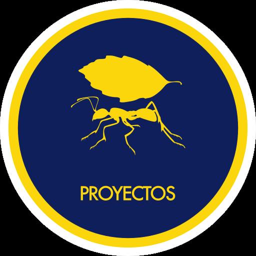 un icono de proyectos, consiste de una hormiga cargando una hoja dentro de un circulo