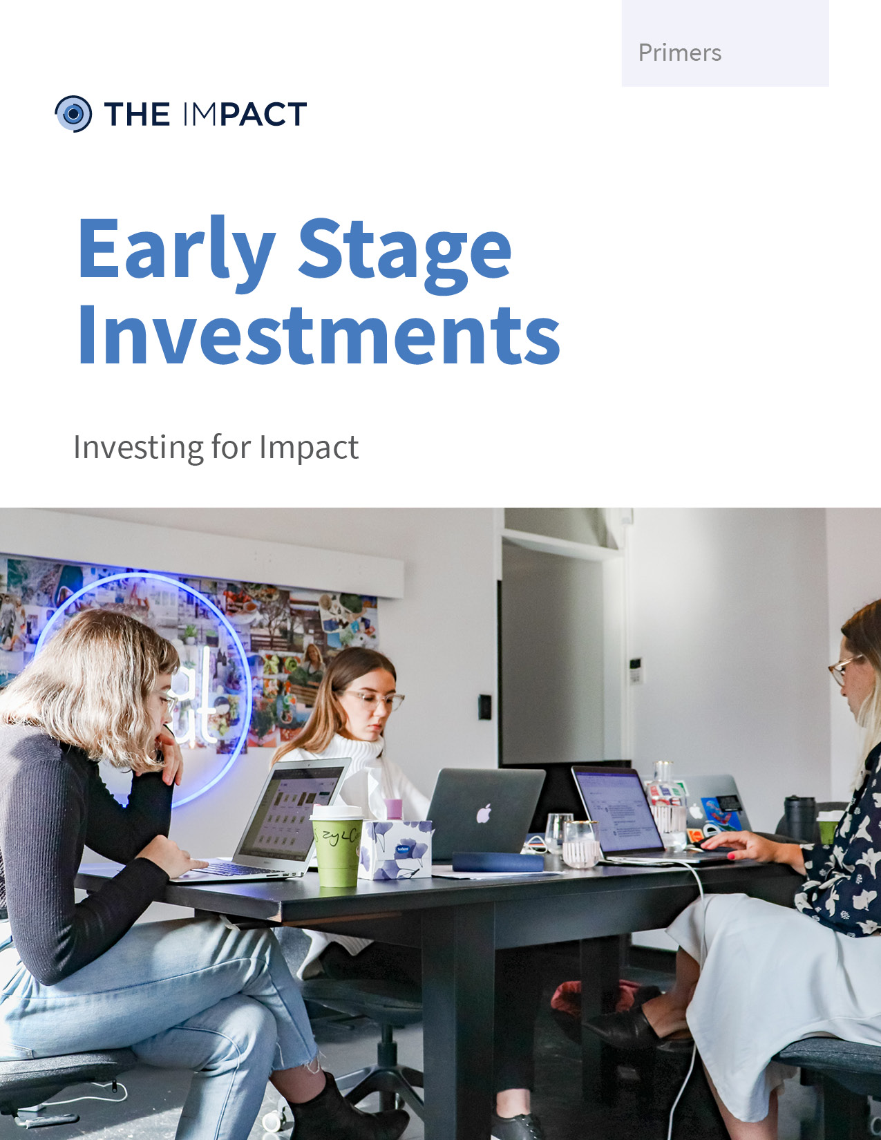 Early Stage Investments. A primer by The ImPact.