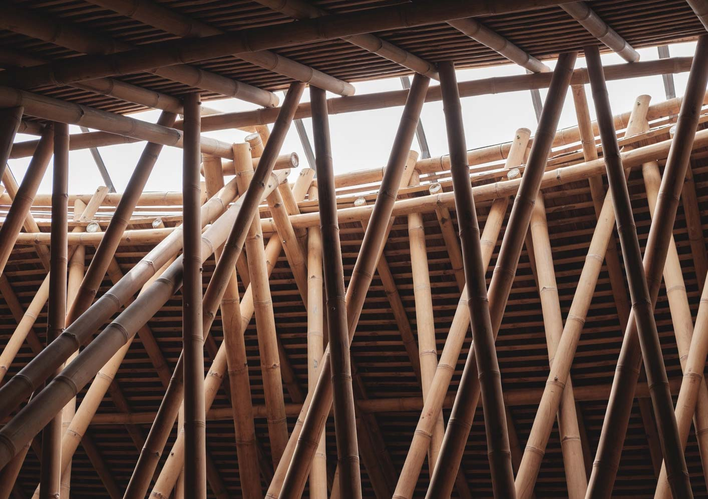 Bamboo skylight in roof