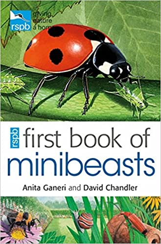Benedykt and Sylvester - Montessori Magnifying Glasses and Minibeasts