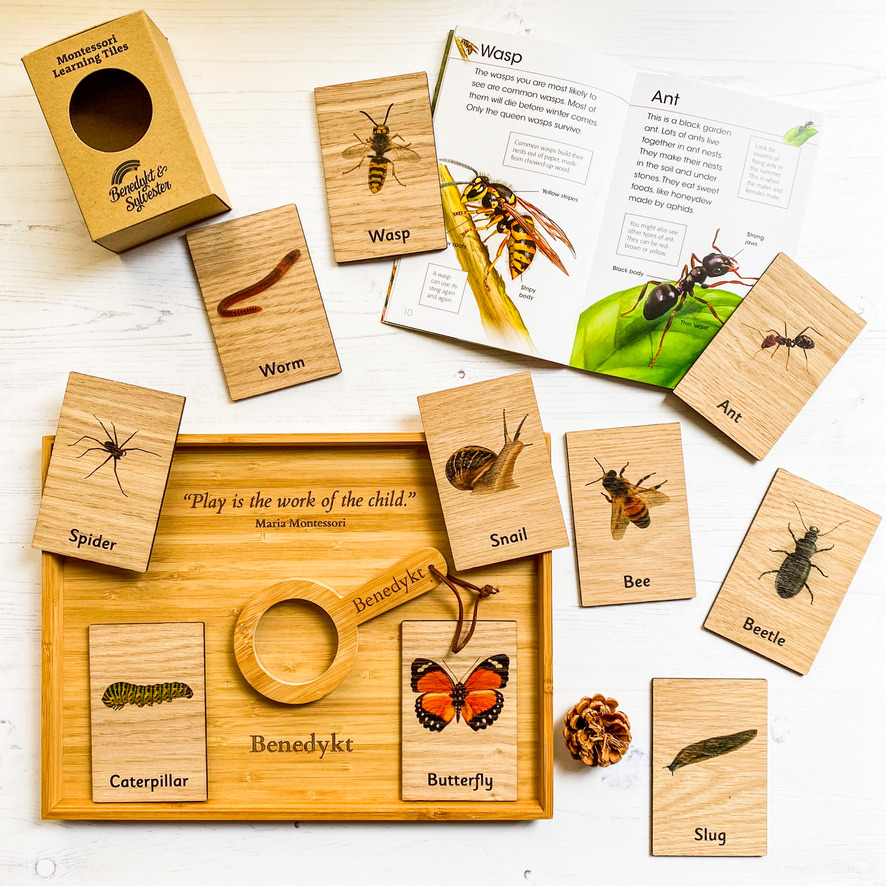 Nature Explorer Gift Set - Save over 20%!
