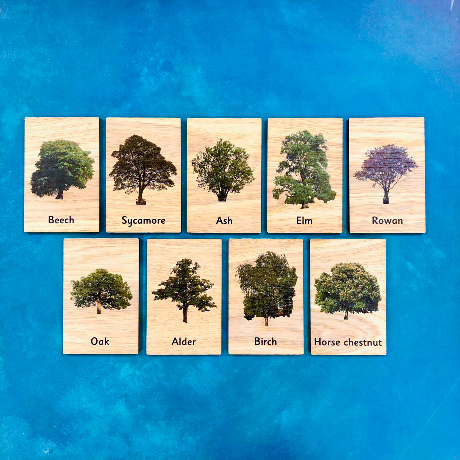 Montessori Inspired Wooden Learning Tiles - Trees & Leaves