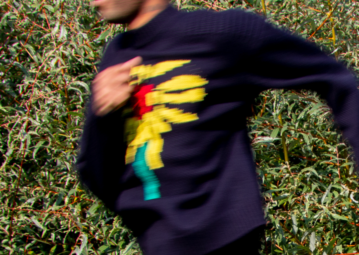 New Fall Arrivals: Landlord