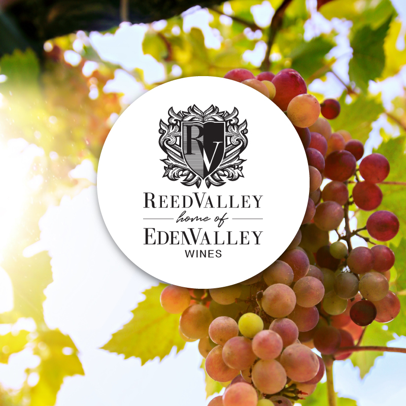 Reedvalley Projects Thumbnail