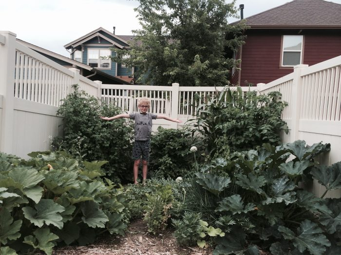 My Covid-19 Victory Garden