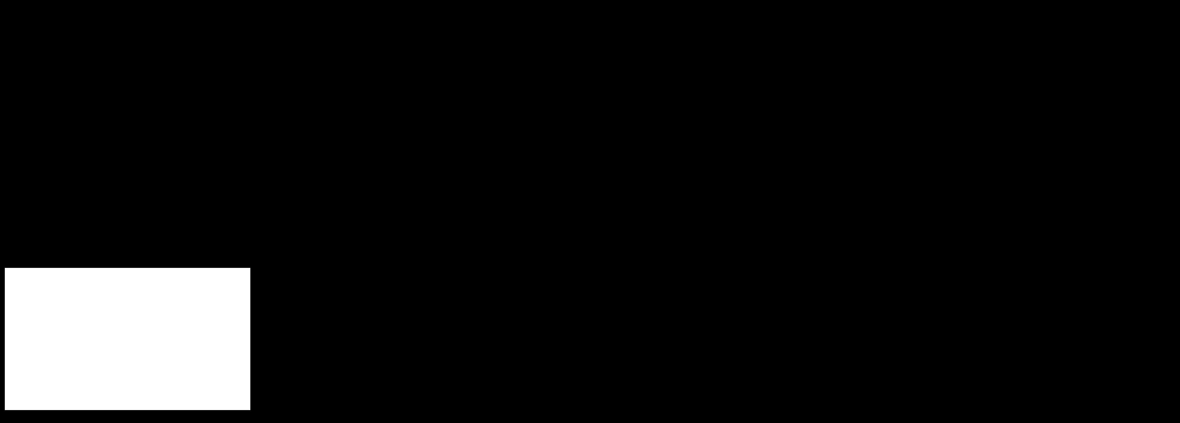 Fachini