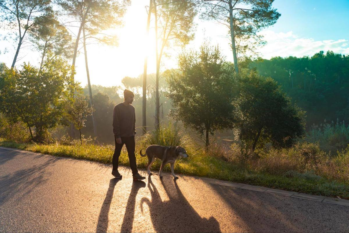 waking up in the middle of the night: man hiking with his dog