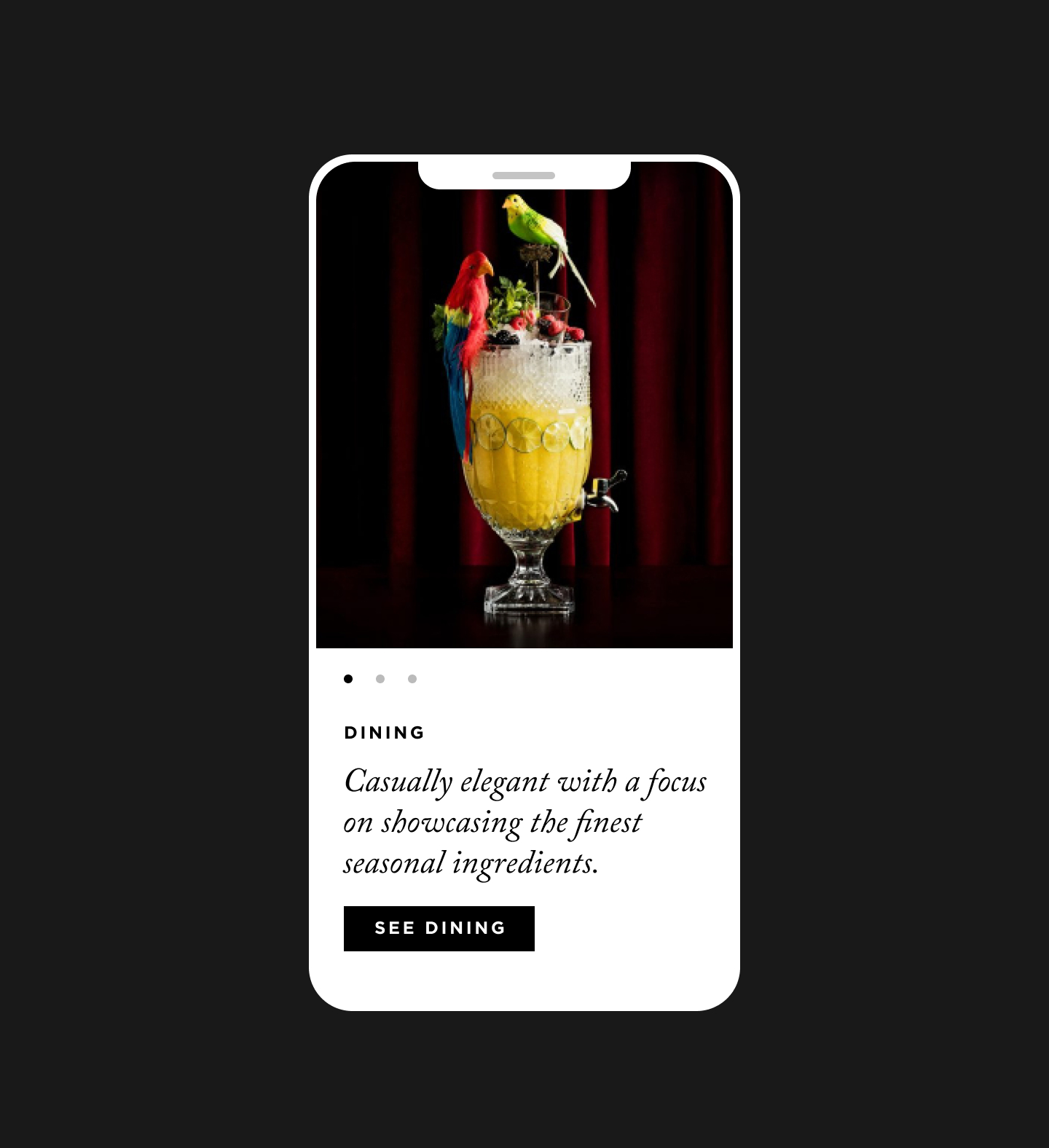 iPhone mockup with Nomad website