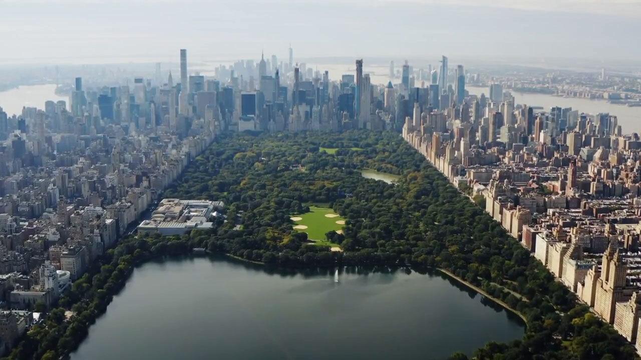Plastic Surgeon NYC | Cosmetic Surgery New York | Manhattan