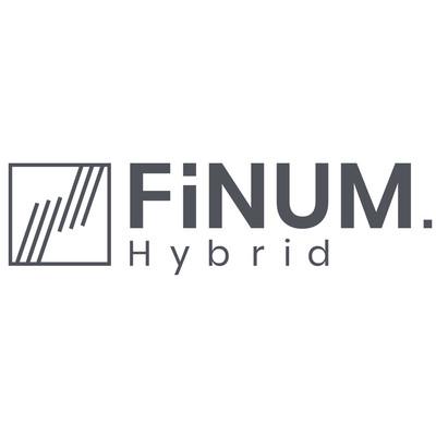 FiNUM.Hybrid