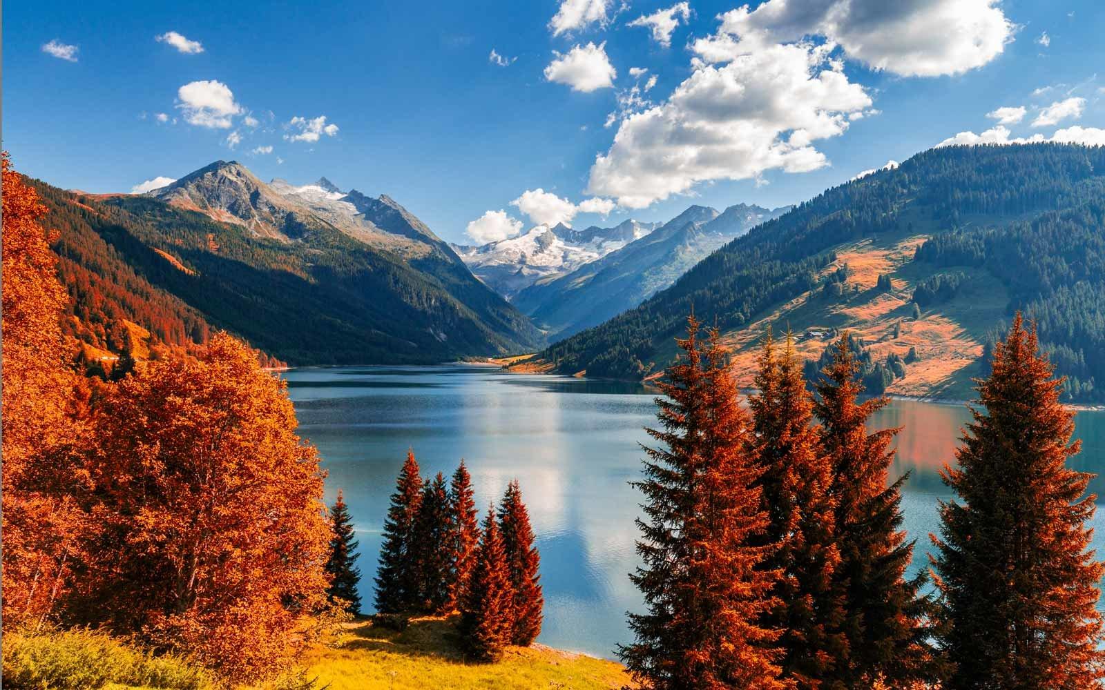 Background image nature scene