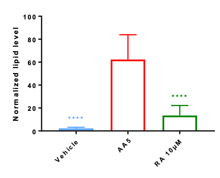 the induction by arachidonic acid shows a real increase of sebum production compared to oher conditions.