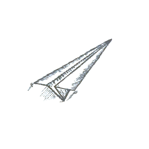 Flying Paper Plane Logo