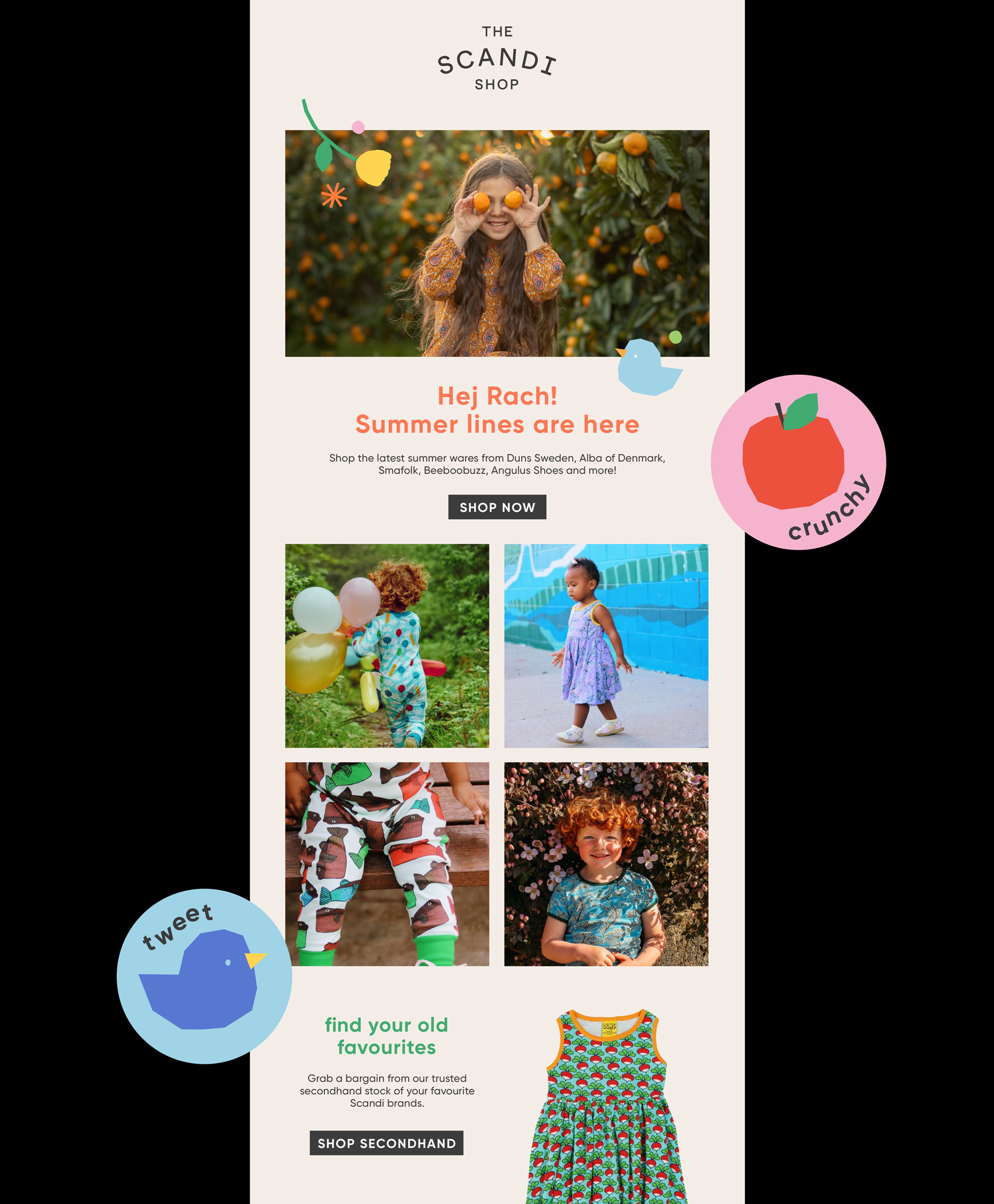 the scandi shop email design