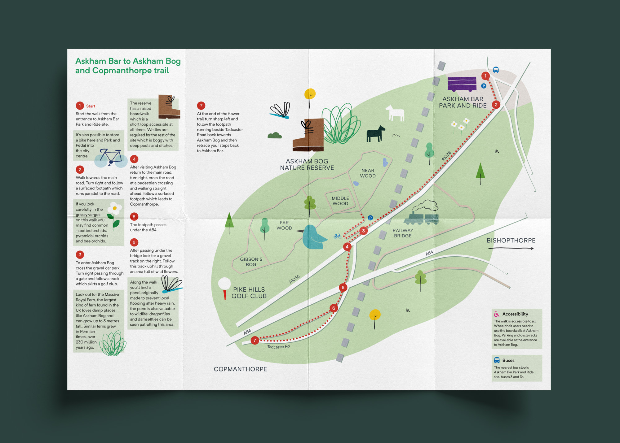 exploring-york-map-design