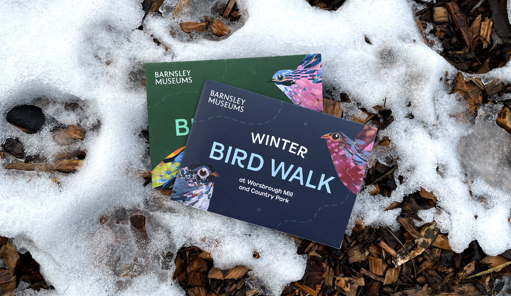 Barnsley Museums National Trust Winter Bird Walk covers