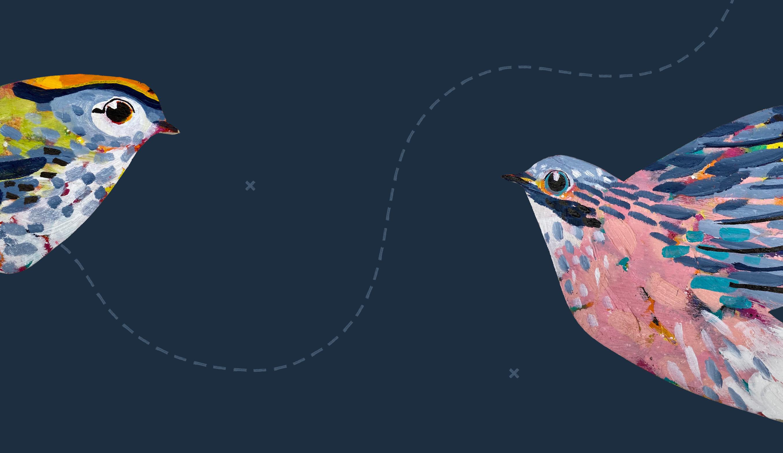 Barnsley Museums National Trust Winter Bird Walk illustrations