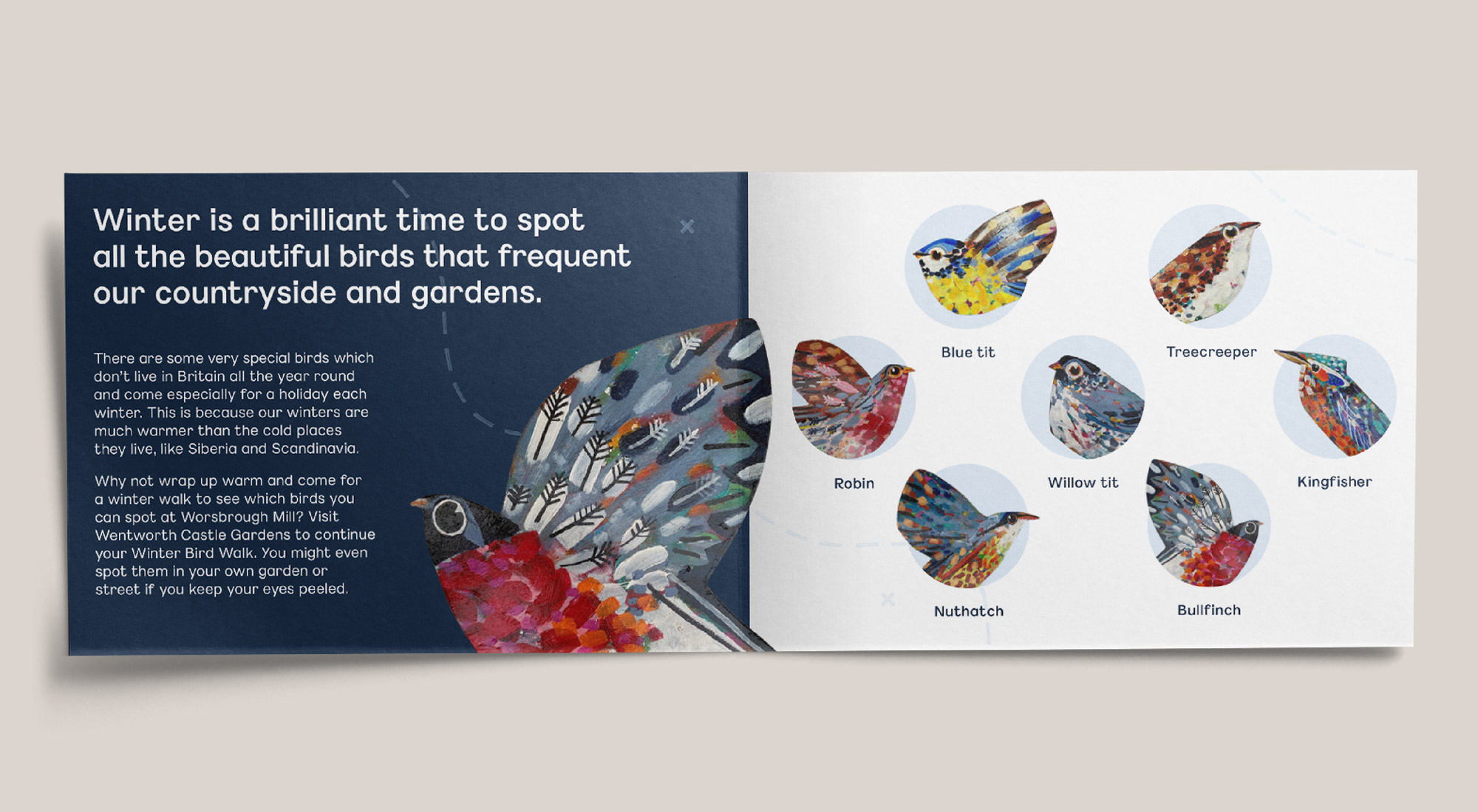 Barnsley Museums National Trust Winter Bird Walk spread