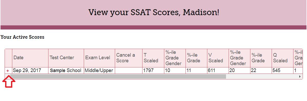 view scores portal screenshot