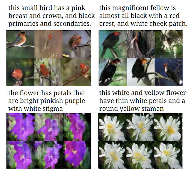 Example of Textual Descriptions and GAN Generated Photographs if Birds and Flowers