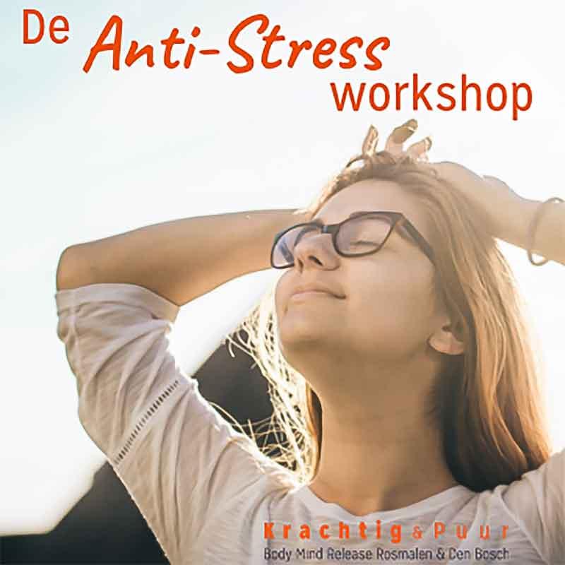 De Anti-Stress Workshop