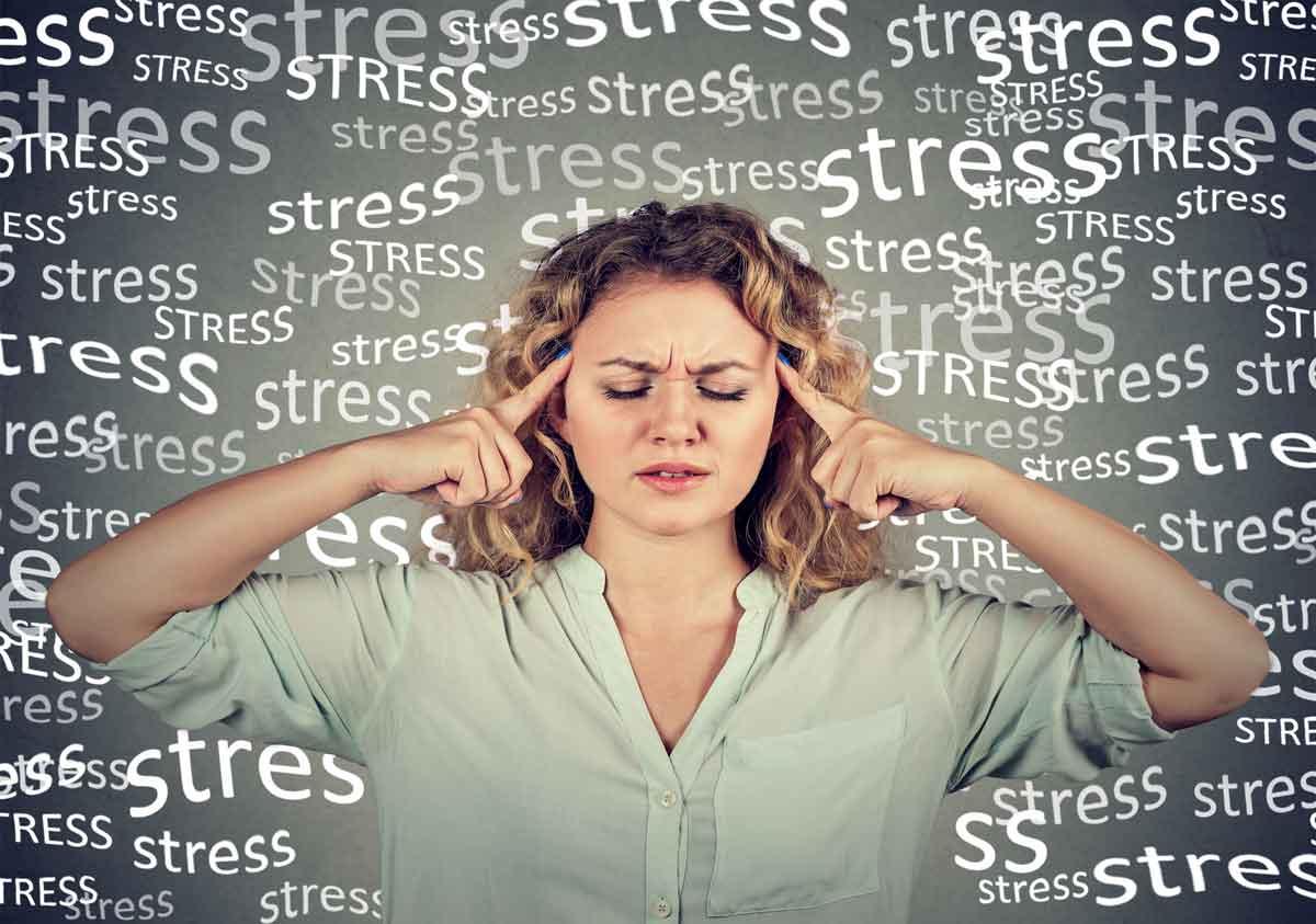 De Anti Stress Workshop
