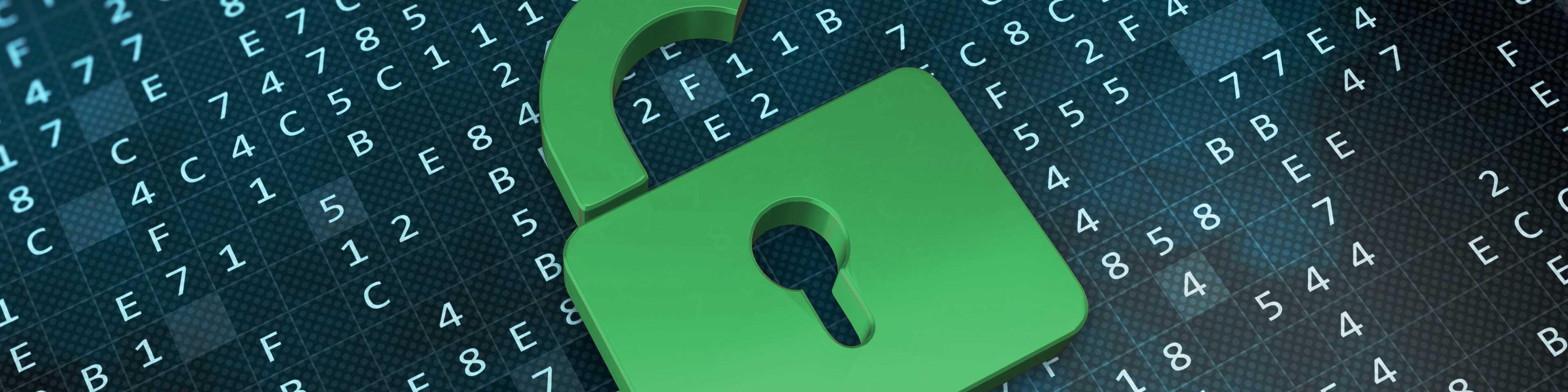 banner pagina privacy en voorwaarden, weergave: hangslot