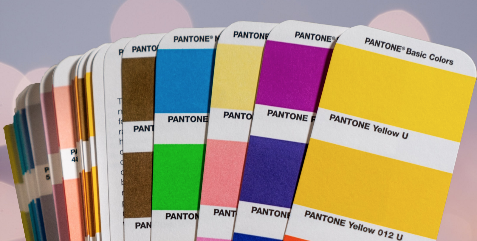 Many Pantone color swatches