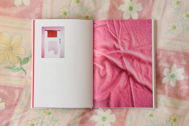 Book 'La Puente', by Charlotte Schmitz