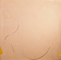 """Buffalo • Acrylic on Canvas, 45"""" x 45"""" • 1970"""