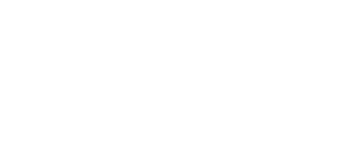 Flowww. Digital logo