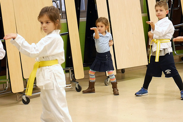 Impact Dojo Areas of Expertise - Karate