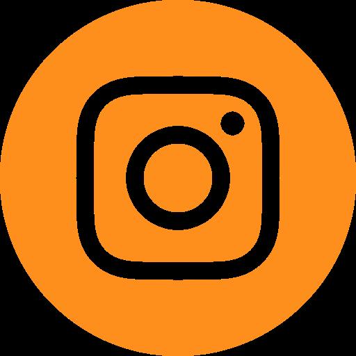 ícone instagram logcomex