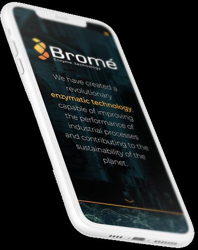 Bromé Enzyme Technology